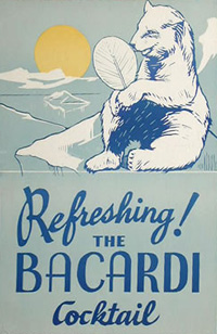 Bacardi Cocktail poster with Polar Bear, fanning itself.